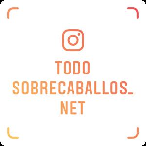 Instagram de fotos de caballos frisones @todosobrecaballos_net